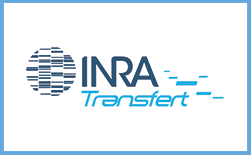 INRA blue border